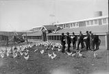 Poultry class