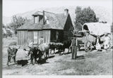 Pioneer home with wagon and oxen team
