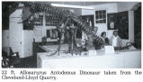 San Rafael Swell -- Allosaurus Museum Display