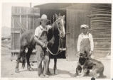 Geary, Elmo -- Merlin and Elmo with horse and dog