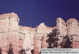Bryce Canyon National Park, Pedestal of Coachman