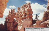 Bryce Canyon National Park, Ostler's Castle