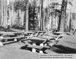 Picnic tables at an unidentified campground