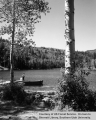 Posey Lake Campground/Lake