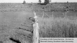 Range enclosures on Pine's allotment, fenced spring 1940
