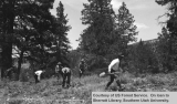 Fire prevention training, Powell National Forest, 1942