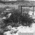 Wildlife management, Little Valley, cage