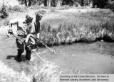 Fisheries studies on the East Fork