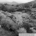 Watershed management, Bear Valley, alluvial deposit