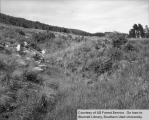 Watershed management, Steep Creek, restoration