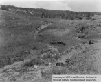 Watershed management, Steep Creek