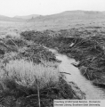 Watershed management, Little Valleys, debris in diversion ditch
