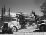 Logging, Dry Creek TS