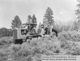 Logging, location unknown