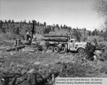 Logging, logging truck, location unknown