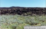 Things: Lava Fields -- HWY 12