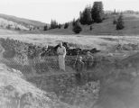 Watershed management, Crawford Creek