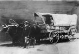 Ezra Meeker with Ox-mobile
