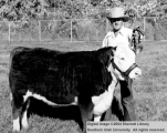 Agriculture, Dennis Atkin with grand champion steer
