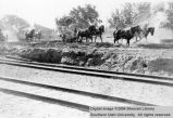 Transportation, grading the Union Pacific railway