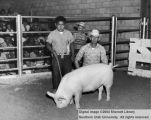 Hogs, Reserve Champion, 1959