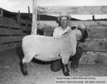 Sheep, Grand Champion, 1957