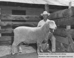Rams, Grand Champion Columbia, 1957