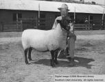 Sheep, Grand Champion Suffolk, 1957