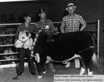 Steers, Grand Champion, 1961