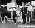 Steers, Grand Champion, 1962