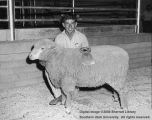 Sheep, Reserve Champion, 1962