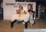 Sheep, Reserve Champion, 1987