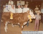 Steer, Reserve Champion, 1983