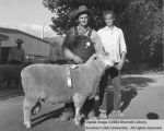 Rams, Reserve Champion Columbia, 1954