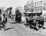 Ox team and covered wagons, Utah Centennial Parade; Cedar City, Iron County, Utah