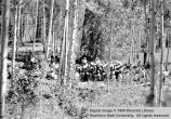 Welfare workers assembled at Duck Creek; Cedar City, Iron County, Utah
