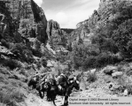 Trail ride in Zion National Park